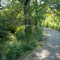 Percorso ecologico delle Acque Chiare - Parco del Rodano (1) - Alessandro Azzolini - Reggio nell'Emilia (RE)