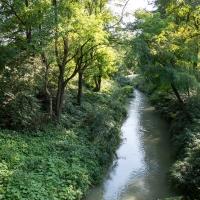 Torrente Rodano - Parco del Rodano - Alessandro Azzolini - Reggio nell'Emilia (RE)