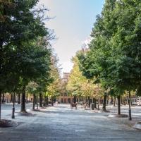 Piazza Fontanesi (3) - Alessandro Azzolini - Reggio nell'Emilia (RE)