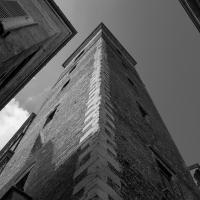 Torre del Bordello (3) - Alessandro Azzolini - Reggio nell'Emilia (RE)