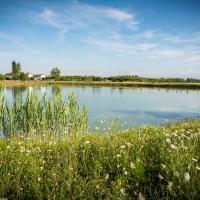 Parco Articolo 21 - Andrea Incerti - Correggio (RE)