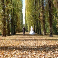 Parco della memoria correggio - Priscilla anna - Correggio (RE)