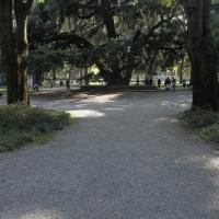 Giardinipubblici02 vascodegama1972 - Vascodegama1972 - Reggio nell'Emilia (RE)