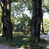 Parco del Popolo (4) - Giulia Bonacini Ph - Reggio nell'Emilia (RE)