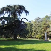 Parco del Popolo (2) - Giulia Bonacini Ph - Reggio nell'Emilia (RE)