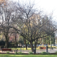 Parco Cervi