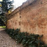 Muro Reggio vecchia 02 Parco cervi - Vascodegama1972 - Reggio nell'Emilia (RE)