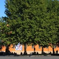 Piazza Martiri - Giulia Bonacini Ph - Reggio nell'Emilia (RE)