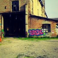 Ex Reggiane particolare - Ceci.melani - Reggio nell'Emilia (RE)