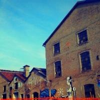 Ex Reggiane - Ceci.melani - Reggio nell'Emilia (RE)