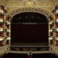 Teatro Municipale Romolo Valli sipario 4 - Lorenzo Gaudenzi - Reggio nell'Emilia (RE)