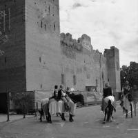 Rocca Medievale e i suoi Cavalieri - Lasagni stefano - Reggiolo (RE)