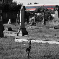 Cimitero Napoleonico Il Grande Viaggio - Claudio9197 - Cavriago (RE)