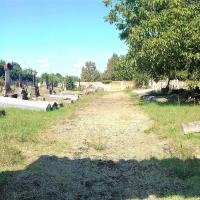 Cimitero napoleonico Cavriago 01 - Laura Simonazzi - Cavriago (RE)