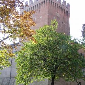 La rocca e i suoi abitanti: nobili famiglie a San Martino