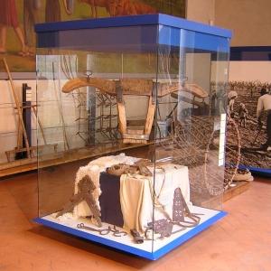 Rocca Estense - Museo dell'Agricoltura e del Mondo Rurale foto di: - - Comune di San Martino in Rio