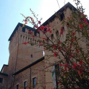 Rocca di Montecchio Emilia - Castello in primavera foto di: |Comune di Montecchio Emilia| - Comune di Montecchio Emilia
