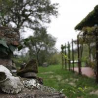 Area pic-nic oasi - Deps7 - Verucchio (RN)