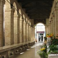 Pescheria in fiore - Crestigialoris - Rimini (RN)