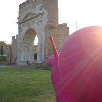La strana creatura - Alice.grussu - Rimini (RN)