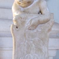 Cappella degli angeli o di isotta, putti 03 stemma rosa - Sailko - Rimini (RN)