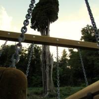 Il cipresso e il parco di Montefiore - LaraLally19 - Montefiore Conca (RN)