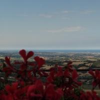 Fiori nel piazzale 2 giugno - LaraLally19 - Montefiore Conca (RN)