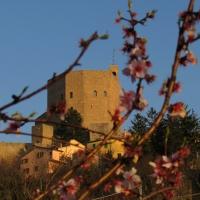 Il borgo ed il risveglio della natura - LaraLally19 - Montefiore Conca (RN)