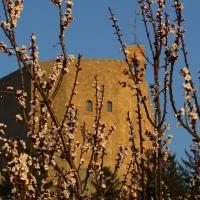 Il castello ed il risveglio della natura - LaraLally19 - Montefiore Conca (RN)