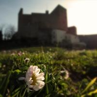 La Rocca e la sua primavera - LaraLally19 - Montefiore Conca (RN)