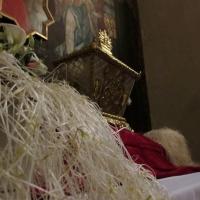 Il grano bianco cresciuto nei sepolcri senza luce - Larabraga19 - Montefiore Conca (RN)