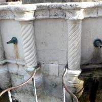 Particolare fontana della pigna - Rimini 3 - Paperoastro - Rimini (RN)