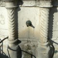 Particolare fontana della pigna - Rimini 13 - Paperoastro - Rimini (RN)