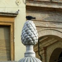 Particolare fontana della pigna - Rimini 1 - Paperoastro - Rimini (RN)