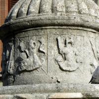Particolare fontana della pigna - Rimini 14 - Paperoastro - Rimini (RN)