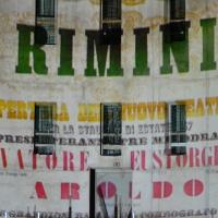 Luci sul Galli - Maxy.champ - Rimini (RN)