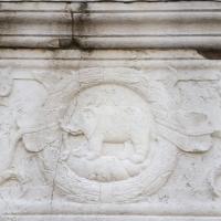 Particolare facciata elefante - Tempio Malatestiano - Opi1010 - Rimini (RN)