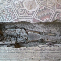 Domus del chirurgo, resti umani - Fringio - Rimini (RN)