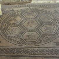 """Domus del chirurgo, mosaico di """"Orfeo tra gli animali"""" - Fringio - Rimini (RN)"""