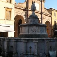 Fontana della Pigna - - RatMan1234 - Rimini (RN)