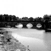 Luci in acqua - Giacomo Marcheselli - Rimini (RN)