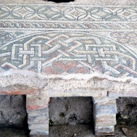 Domus chirurgo mosaici 3 - Paperoastro - Rimini (RN)