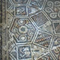 Domus chirurgo mosaici 1 - Paperoastro - Rimini (RN)