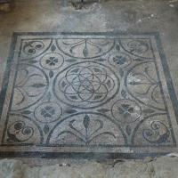 Domus chirurgo mosaici 8 - Paperoastro - Rimini (RN)