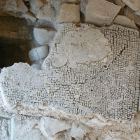 Domus chirurgo mosaici 14 - Paperoastro - Rimini (RN)