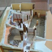 Plastico domus chirurgo 1 - Paperoastro - Rimini (RN)