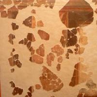 Pannello decorativo domus chirurgo 2 - Paperoastro - Rimini (RN)