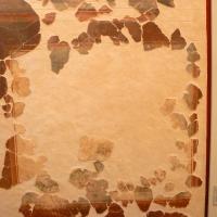 Pannello decorativo domus chirurgo 1 - Paperoastro - Rimini (RN)