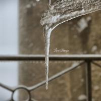 La Rocca e la Galaverna....ghiaccio sulla neve103 - Larabraga19 - Montefiore Conca (RN)