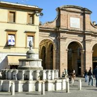 7 pigna(1) - Teuz7 - Rimini (RN)